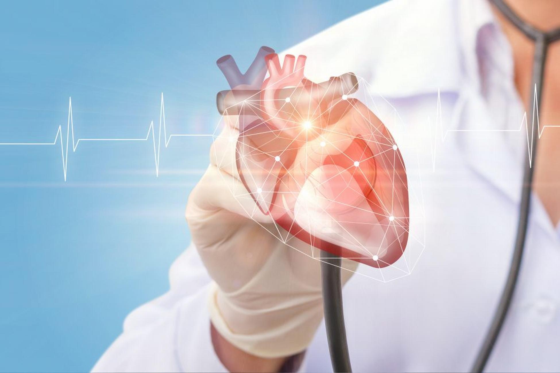kardiolog bielsko